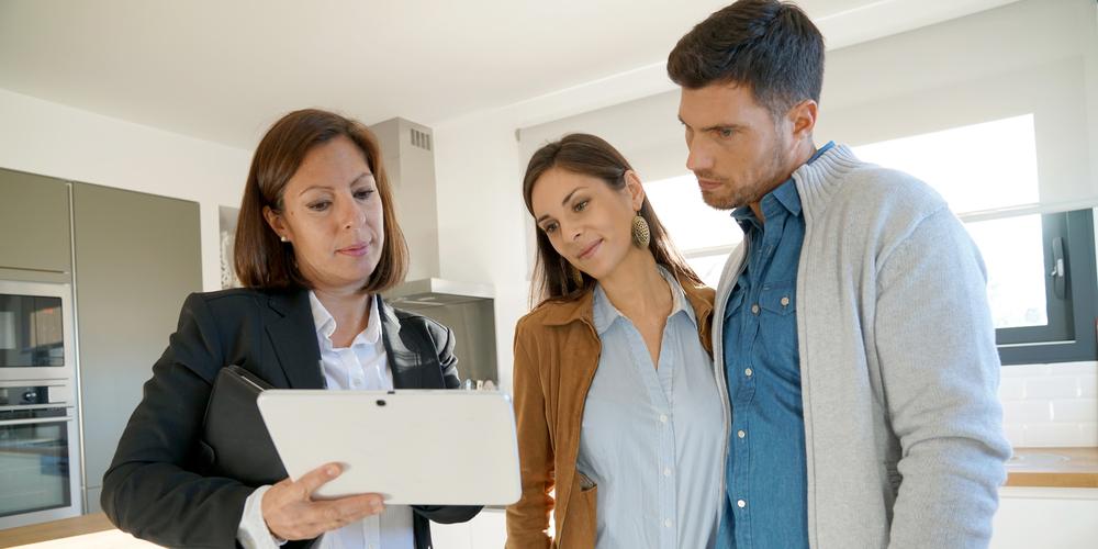Real Estate Agent Explaining